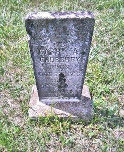 Cappy A. Gadberry