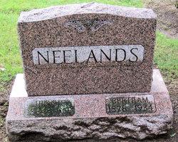 Bertram Neelands