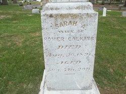 Sarah Ann <I>Dodge</I> Calkins