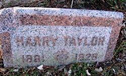 Harry Taylor