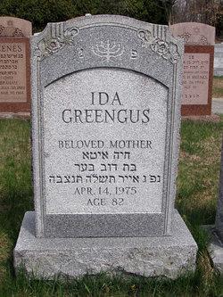 Ida <I>Zieve</I> Greengus