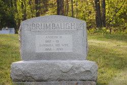 Andrew Hetrick Brumbaugh