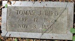 Thomas Jefferson Bird