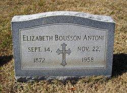 Elizabeth Ann <I>Bousson</I> Antoni