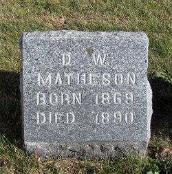 D W Matheson