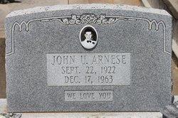 John Urrea Arnese