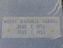 Wayne Randall Barnes