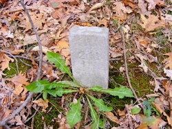Pauper Grave 211