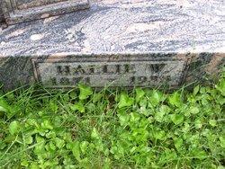 Hallie Walter Amsden