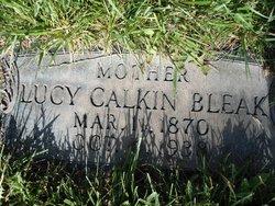 Lucy Calkin Bleak
