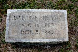 Jasper Newton Tribble