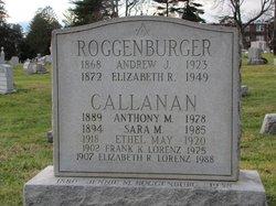 Anthony M Callanan