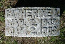 Catherine A <I>Maroney</I> Bellew