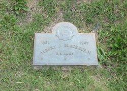 Albert J Blackburn