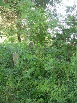 Bridgewater-Cox Cemetery