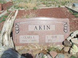 Luie Akin
