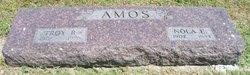 Troy R. Amos