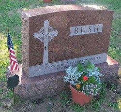 Herbert Bush