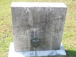 Caroline <I>Wharton</I> Brumbaugh