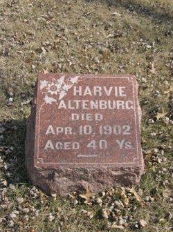 Harvie Altenburg