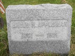 Jacob H Appleman