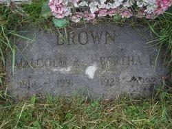 Malcolm P Brown