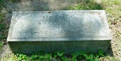 Daniel Nestel, Jr