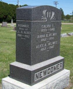 Calvin Levi Newcomer