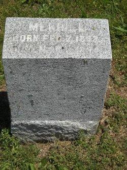 Merrill I Allen