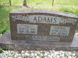 Bertha Ellen Jane <I>Simpson</I> Adams