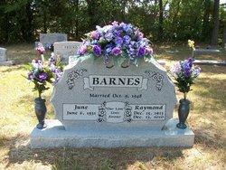 Raymond John Barnes