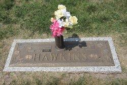 Glenn L. Hawkins