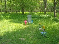 Taylor Family Hawksbill Gap Cemetery