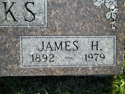 James H Finks