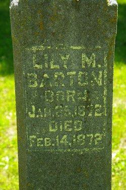 Lilly M Barton