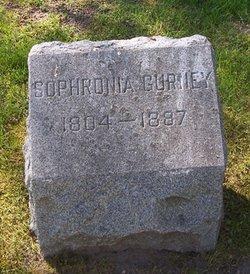 Sophronia <I>Macomber</I> Gurney