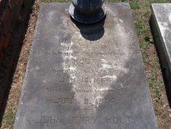 Mary Louisa Holt