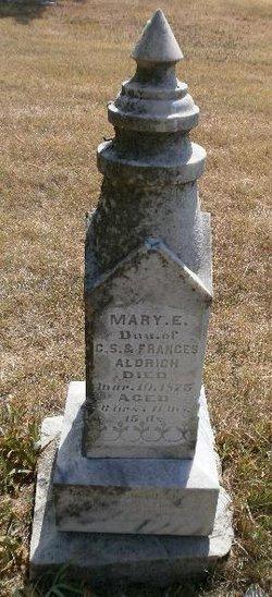 Mary E Aldrich