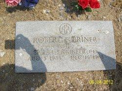 Robert E Briner