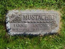 Antonio Mustachio
