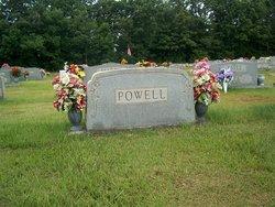 Lucy Callie <I>Ellison</I> Powell