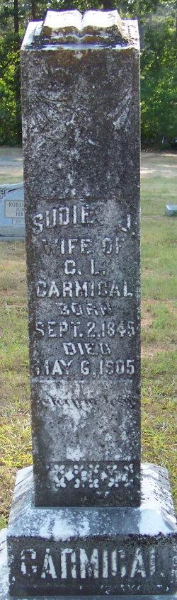 Susan Sudie J. <I>Hagins</I> Carmical