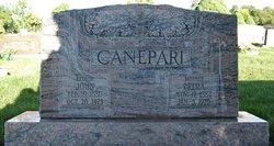 John Canepari