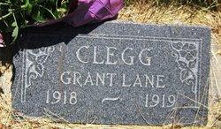Grant L Clegg