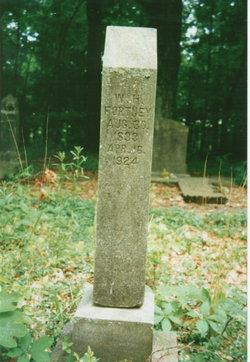 William Henderson Fortney