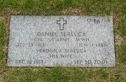 Daniel Serluca