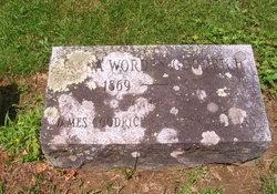 Elvina <I>Worden</I> Goodrich