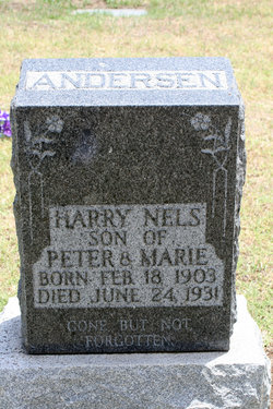 Harry Nels Andersen