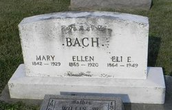 Eli E Bach