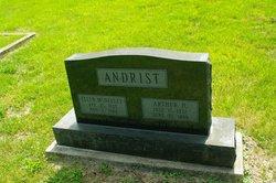 Arthur Henry Andrist
